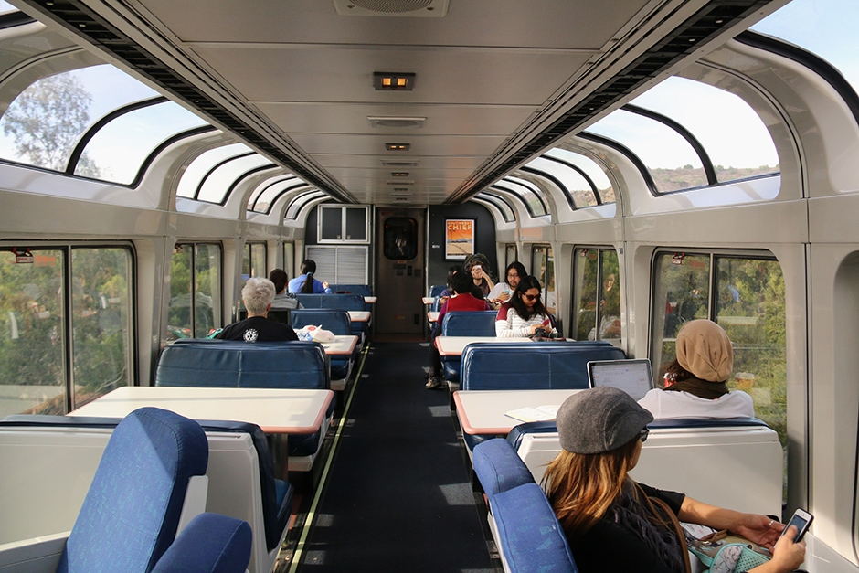 Observation Car small